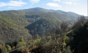 Planina Juhor (Veliki Vetren 773) – Jagodina   Super Avantura